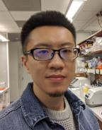 Yu Xia, Ph.D.